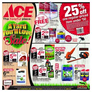 Central Florida Ace Hardware Stores yard Sale